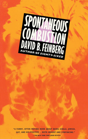 Spontaneous Combustion by David B. Feinberg