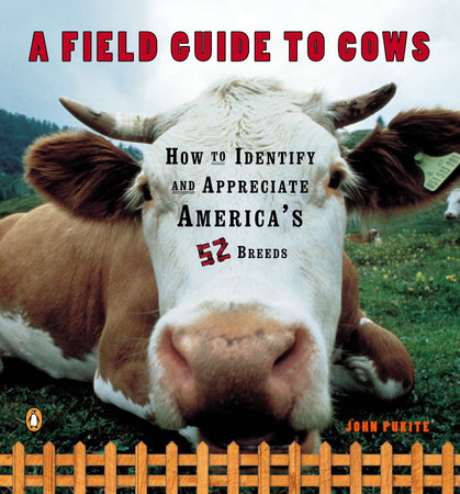A Field Guide to Cows by John Pukite