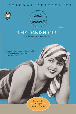 The Danish Girl Book Cover Picture