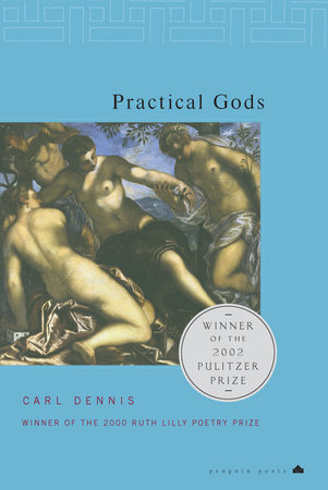 Practical Gods Book Cover Picture