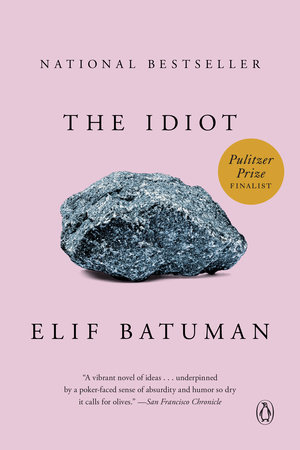 The cover of the book The Idiot