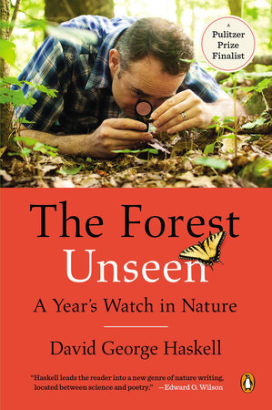 The Forest Unseen