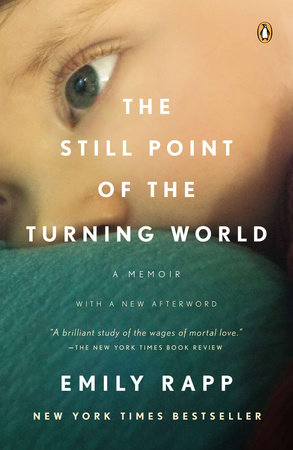 The Still Point of the Turning World by Emily Rapp Black