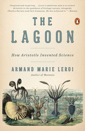 The Lagoon by Armand Marie Leroi