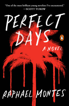 Perfect Days Book Cover Picture