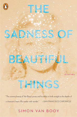 The cover of the book The Sadness of Beautiful Things