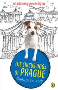 The Circus Dogs of Prague