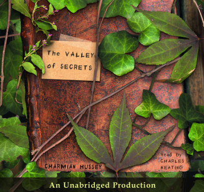The Valley of Secrets cover