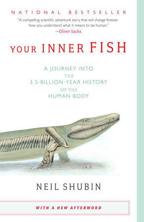 "Image of ""Your Inner Fish"" cover design. Cover illustration of the front half of a transparent green creature, Tiktaalik roseae, revealing skeleton."