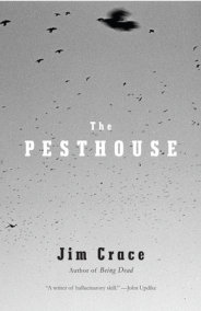 The Pesthouse