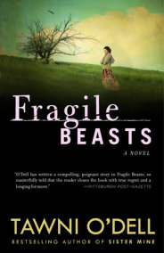 Fragile Beasts