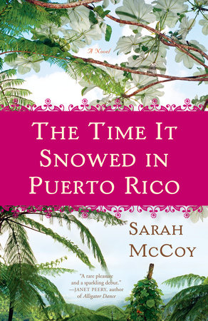 The Time It Snowed in Puerto Rico by Sarah McCoy