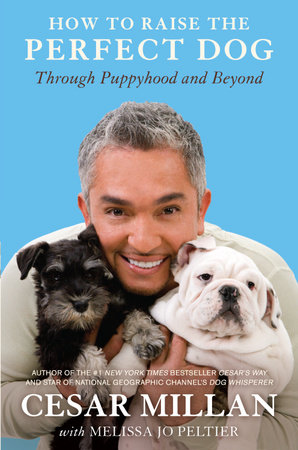 How to Raise the Perfect Dog by Cesar Millan and Melissa Jo Peltier