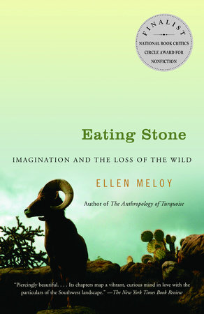 Eating Stone by Ellen Meloy
