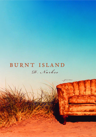 Burnt Island by D. Nurkse