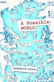 A Possible World