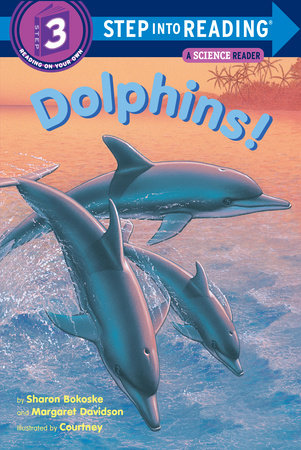 Dolphins! by Sharon Bokoske