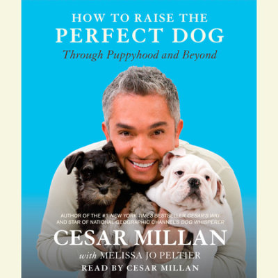 How to Raise the Perfect Dog cover