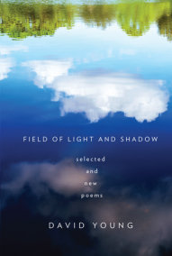 Field of Light and Shadow