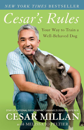 Dog perfect to the millan cesar how pdf raise