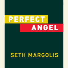 Perfect Angel Cover
