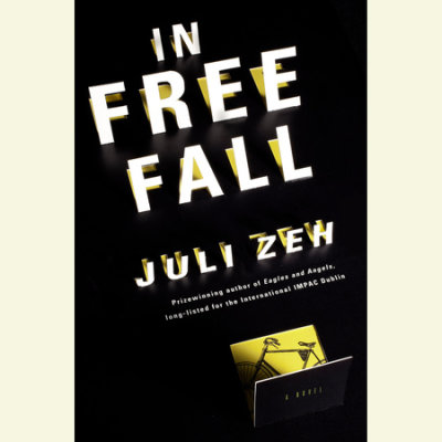 In Free Fall cover