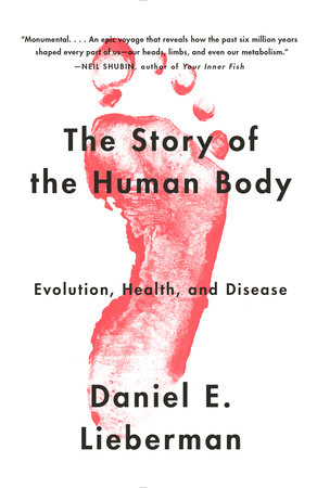 Image result for the story of the human body