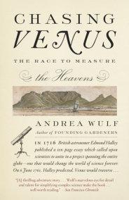 Chasing Venus