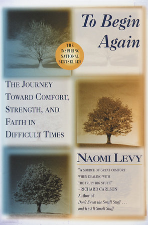 To Begin Again by Naomi Levy