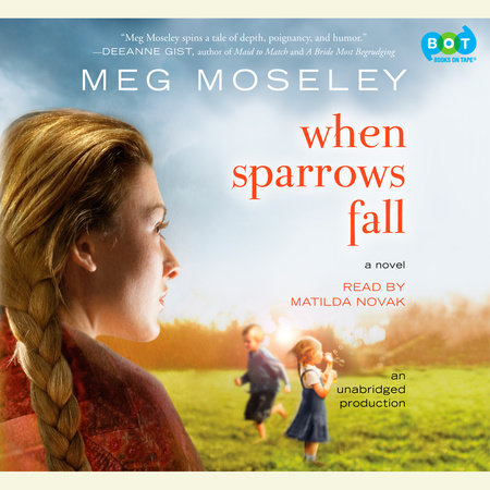When Sparrows Fall by Meg Moseley
