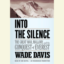 Into the Silence Cover