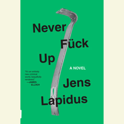 Never Fuck Up cover