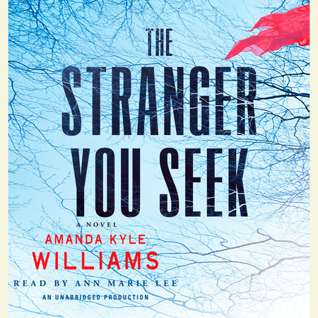 The Stranger You Seek by Amanda Kyle Williams