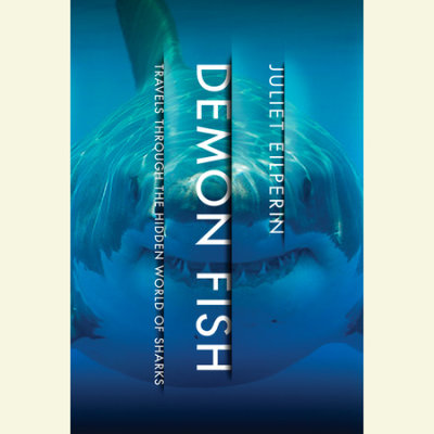 Demon Fish cover