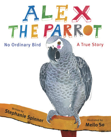 Alex the Parrot: No Ordinary Bird by Stephanie Spinner