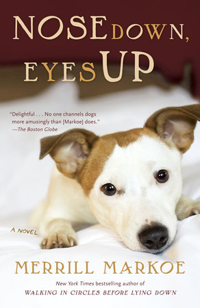 Nose Down, Eyes Up by Merrill Markoe