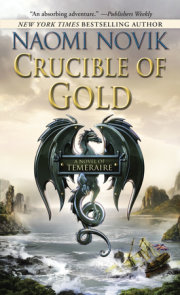 Crucible of Gold