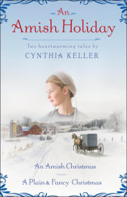 An Amish Holiday