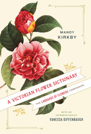 A Victorian Flower Dictionary by Mandy Kirkby