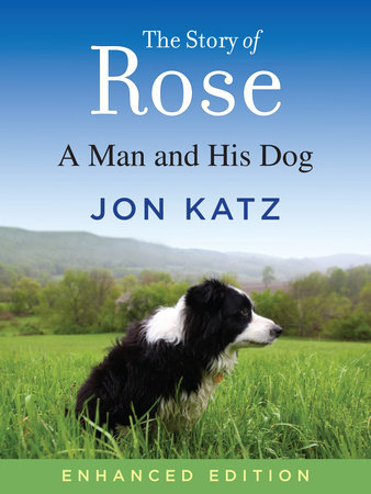 The Story of Rose by Jon Katz