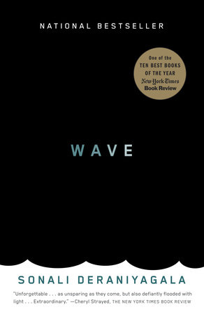 The cover of the book Wave