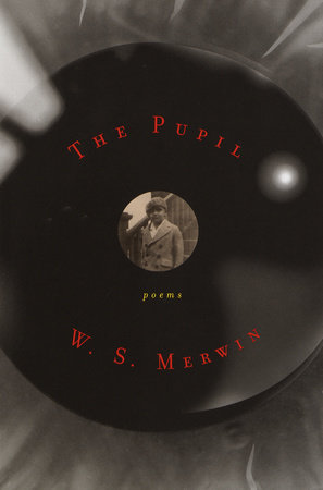 The Pupil by W. S. Merwin