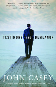 TESTIMONY AND DEMEANOR