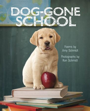 Dog-Gone School by Amy Schmidt