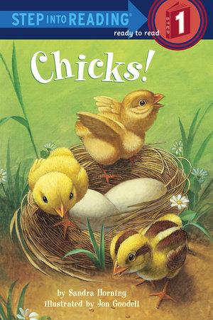 Chicks! by Sandra Horning