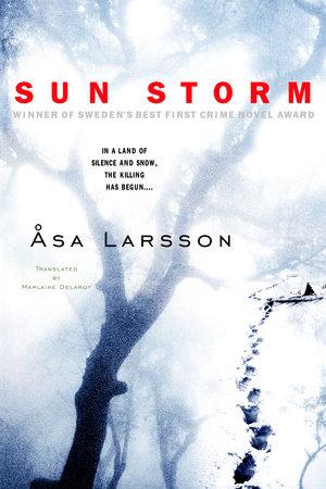 Sun Storm by Asa Larsson