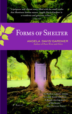 Forms of Shelter by Angela Davis-Gardner
