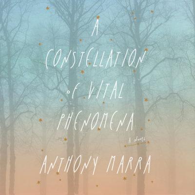 A Constellation of Vital Phenomena cover