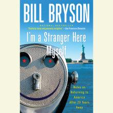 I'm a Stranger Here Myself Cover