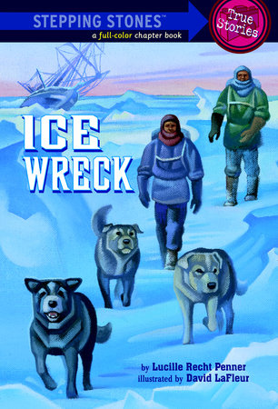 Ice Wreck by Lucille Recht Penner